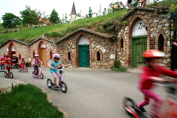 The ride took place between Vrbice wine cellars which have beautiful stone entrance portals with pointed arches. You cannot find such anywhere in the world.