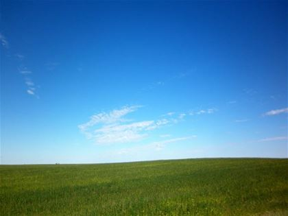 The famous image by Charles O'Rear, which is known as the wallpaper for the Windows XP operating system, might have been shot there.