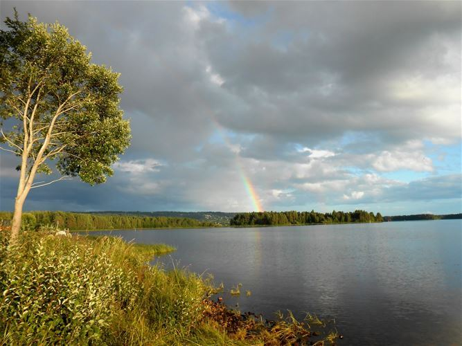 Sweden is a country with thousands of lakes, vast forests and never-ending distances