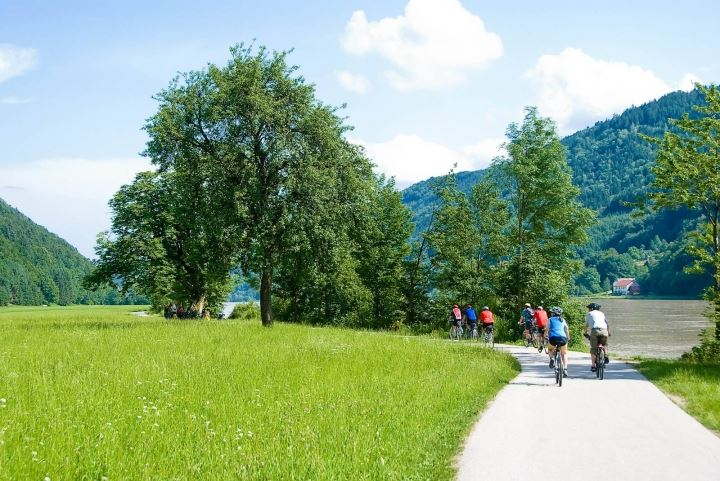 Smooth asphalt surface, flat route and the spectacular scenery of the Danube river attract cyclists from the whole Europe.