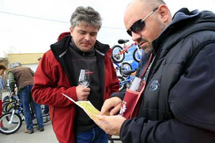 Browsing through the plan of wine cellars with a glass of wine in the hand.