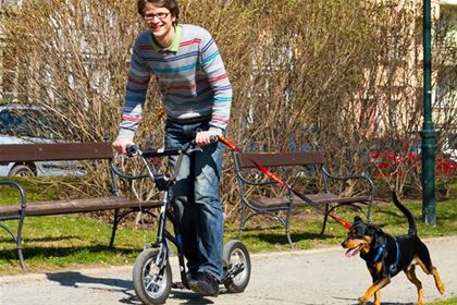 You can run many kilometers with your dog on a scooter.